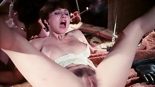 Blowjob,Group Sex,Fucking,Pornstar,Vintage