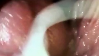 Amateur,Compilation,Creampie,Cumshot,Homemade