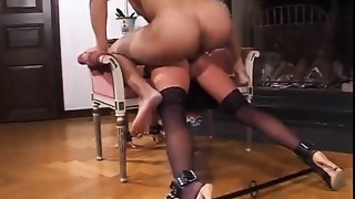 Anal,BDSM,Big Boobs,Big Cock,Black and Ebony,Fucking,MILF