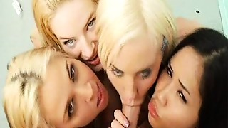 Blonde,Blowjob,Brunette,Cumshot,Facial,Funny,Group Sex,Natural,Redhead,Slut